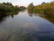 Fiume Torsa, Torsa di Pocenia, tra le peschiere, Agosto 2012