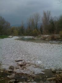 Fiume Natisone, sotto il ponte di Vernasso (inizio zona RP1), Aprile 2013