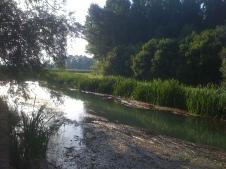 Roggia Gremare - Lonca agosto 2013