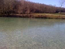Natisone - Manzano - Febbraio 2014