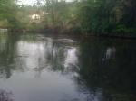 Zona NK - da S.Floreano, Buja - Aprile 2014