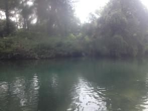 Fiume Livenza - Sacile - Maggio 2015